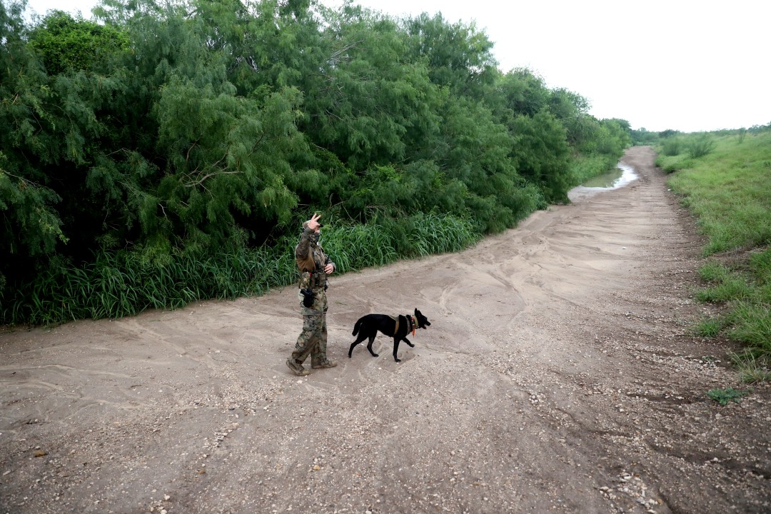 An agent in camouflage gear with a dog on a dirt path